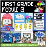 Wit and Wisdom First Grade- Module 3