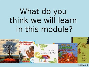 Wit and Wisdom Grade 2, Module 1, Lessons 1-3: Weather