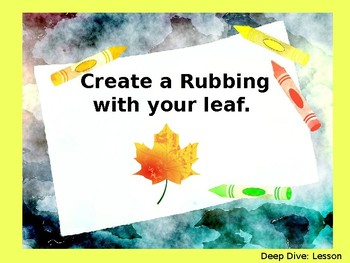 Wit and Wisdom Grade 2, Module 1, Lessons 20-24: How Do Leaves Change Colors?