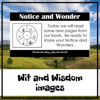 Wit and Wisdom- Grade 2- Module 2, Lessons 6-10