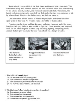Wit and Wisdom Grade 3 Module 1 Giant Squid Quiz