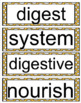 Wit and Wisdom Module 4, Grade 2 Bundle