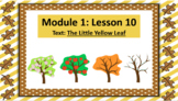 Wit and Wisdom Slideshow (2nd Grade, Module 1, Lesson 10)