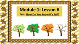 Wit and Wisdom Slideshow (2nd Grade, Module 1, Lesson 6)