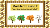 Wit and Wisdom Slideshow (2nd Grade, Module 1, Lesson 7)