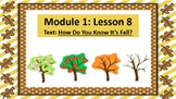 Wit and Wisdom Slideshow (2nd Grade, Module 1, Lesson 8)
