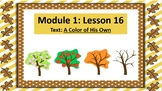 Wit and Wisdom Slideshow (2nd Grade, Module 1, Lessons 15-19)