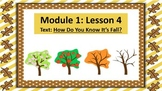 Wit and Wisdom Slideshow (2nd Grade, Module 1, Lessons 4-9)