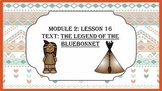 Wit and Wisdom Slideshows (2nd Grade, Module 2, Lessons 16