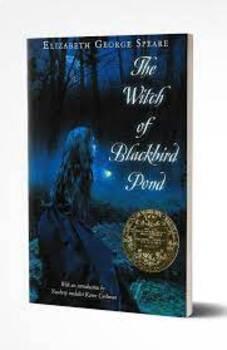 Witch of Blackbird Pond Ch. MC Tests
