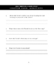 Wolf Brother, A Novel Study: Chapter 4 / Questions Only / Student Worksheets