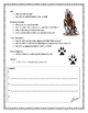 Wolf Informational Report Packet, 12 Pages, FREE