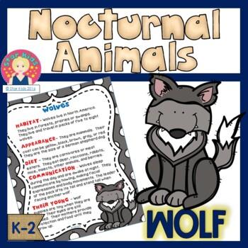 Wolf - Nocturnal Animals