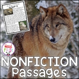 Wolf Nonfiction Guided Reading Comprehension and Fluency Passages on Wolves