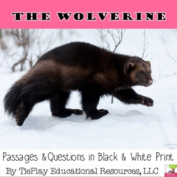 Wolverine Nonfiction Passages and Comprehension Questions Black White No Prep
