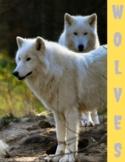 Wolves Unit Study