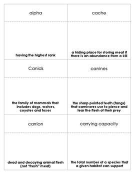 Wolves Vocabulary Bingo
