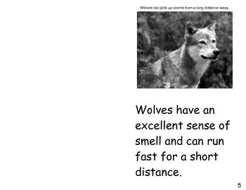 Wolves- a non-fiction guided reading book