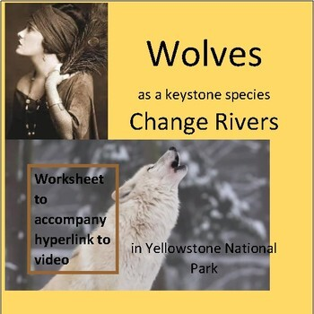 Wolves as a Keystone Species Change Rivers in Yellowstone | TpT