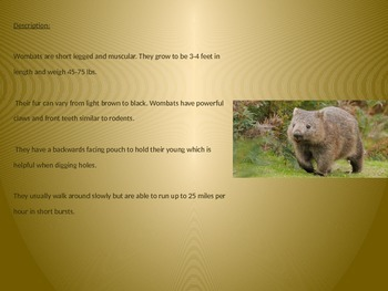 Wombat Power Point - Facts Pictures 8 Slides