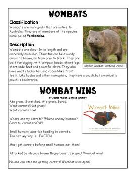 Wombats Information Text Vs Fiction Wombat Wins