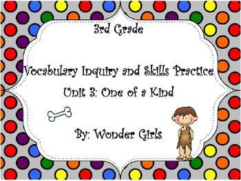 WonderGirls 3rd Grade: Unit 3 Vocabulary Inquiry and Skills Practice