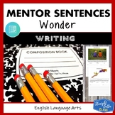 Wonder: Mentor Sentences Writing Style