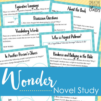 Wonder Novel Study with Lesson Plans and Worksheets by Learn in Color