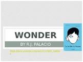 Wonder Powerpoint