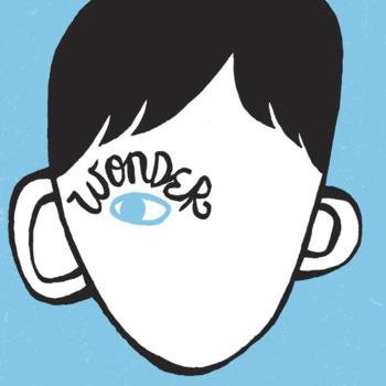 Wonder Reading and Comprehension Checks