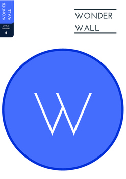 Wonder Wall Display