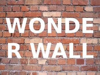 Wonder Wall Sign