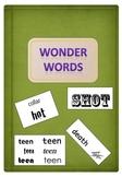 Wonder Words (what's the hidden message) - Language Resource