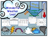 Wonderful Weather Unit!