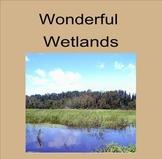 Wonderful Wetlands!