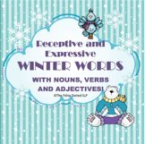 Wonderful Winter Words!  An activity packet for nouns, verbs and adjectives