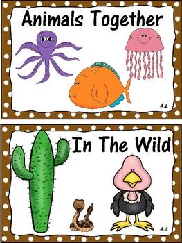 Wonders 1st Grade Focus Wall Unit 4