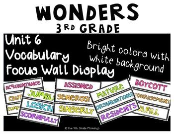 Wonders 3rd Grade Focus Wall Vocabulary Display - Unit 6