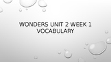 Wonders 4th Grade Unit 2 Week 1 Editable Vocabulary Powerpoint