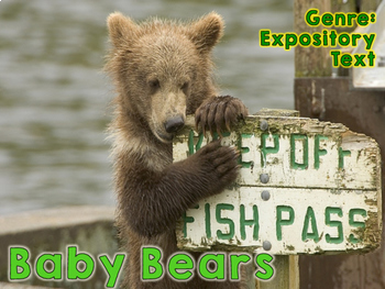 Baby Bears Alternative Lessons for Your Reading Series