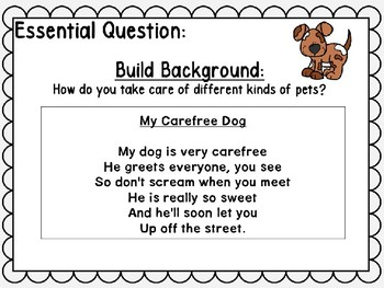 Wonders Kindergarten Unit 7 Week 2 Power Point The Birthday Pet