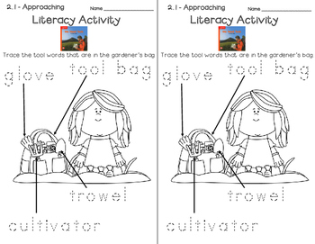 Wonders Leveled Reader Literacy Activities Unit 2