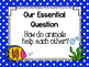 Wonders McGraw-Hill 1st Grade Unit 4 Week 2 Supplemental F