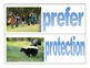 Wonders- McGraw Hill- third grade- vocabulary cards- Unit 4 Weeks 1-5!!!