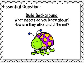 Wonders Power Point Unit 4 Week 4 Insect Hide and Seek First Grade