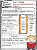 Wonders Reading Differentiated Newsletters / Study Guides Grade 1 Unit 4