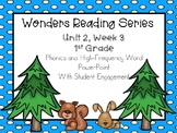 Wonders, Unit 2, Week 3, Phonics and High-Frequency Word PowerPoint