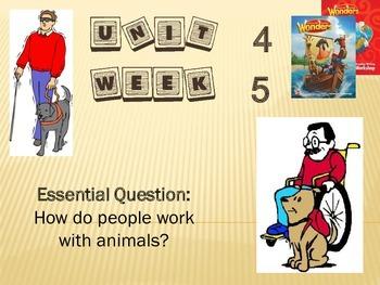 Wonders Reading Series 1st grade Unit 4 Week 5 Vocabulary