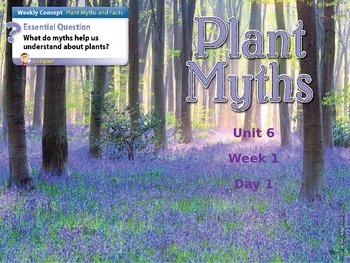 Wonders Second Grade Unit 6 Week 1 Power Point