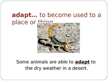 Wonders Second Grade Vocabulary Powerpoint Unit 2 Week 1 A Visit to the Desert